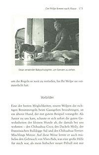 Cesar Millans Welpenschule - Produktdetailbild 4