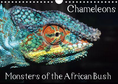 Chameleons Monsters of the African Bush (Wall Calendar 2019 DIN A4 Landscape), Chris Hellier