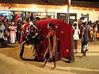 Chandani und ihr Elefant - Produktdetailbild 5
