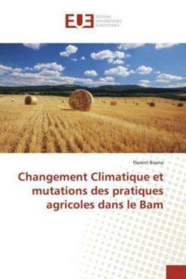 Changement Climatique et mutations des pratiques agricoles dans le Bam, Florent Boena
