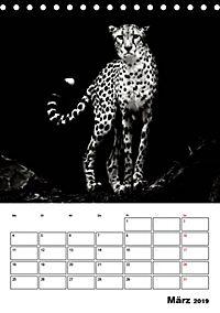 Charakterköpfe aus der Welt der Tiere (Tischkalender 2019 DIN A5 hoch) - Produktdetailbild 3