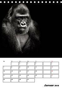 Charakterköpfe aus der Welt der Tiere (Tischkalender 2019 DIN A5 hoch) - Produktdetailbild 1