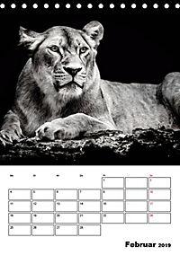Charakterköpfe aus der Welt der Tiere (Tischkalender 2019 DIN A5 hoch) - Produktdetailbild 2