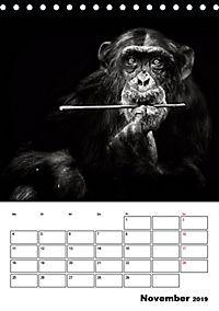 Charakterköpfe aus der Welt der Tiere (Tischkalender 2019 DIN A5 hoch) - Produktdetailbild 11