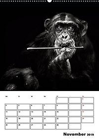 Charakterköpfe aus der Welt der Tiere (Wandkalender 2019 DIN A2 hoch) - Produktdetailbild 11