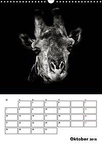 Charakterköpfe aus der Welt der Tiere (Wandkalender 2019 DIN A3 hoch) - Produktdetailbild 10