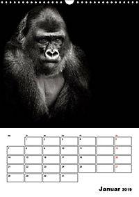 Charakterköpfe aus der Welt der Tiere (Wandkalender 2019 DIN A3 hoch) - Produktdetailbild 1