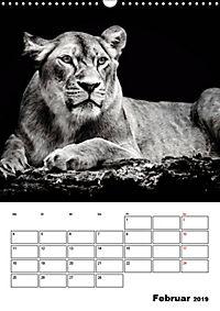 Charakterköpfe aus der Welt der Tiere (Wandkalender 2019 DIN A3 hoch) - Produktdetailbild 2
