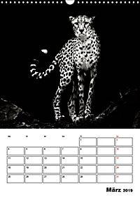 Charakterköpfe aus der Welt der Tiere (Wandkalender 2019 DIN A3 hoch) - Produktdetailbild 3