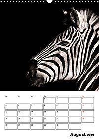 Charakterköpfe aus der Welt der Tiere (Wandkalender 2019 DIN A3 hoch) - Produktdetailbild 8