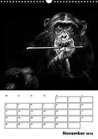 Charakterköpfe aus der Welt der Tiere (Wandkalender 2019 DIN A3 hoch) - Produktdetailbild 11