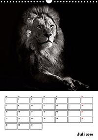 Charakterköpfe aus der Welt der Tiere (Wandkalender 2019 DIN A3 hoch) - Produktdetailbild 7