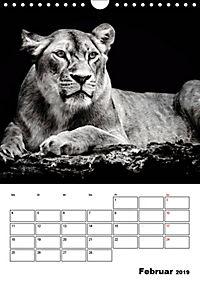 Charakterköpfe aus der Welt der Tiere (Wandkalender 2019 DIN A4 hoch) - Produktdetailbild 2