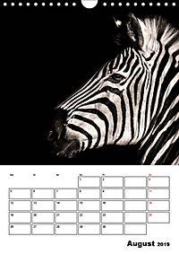 Charakterköpfe aus der Welt der Tiere (Wandkalender 2019 DIN A4 hoch) - Produktdetailbild 8