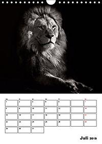 Charakterköpfe aus der Welt der Tiere (Wandkalender 2019 DIN A4 hoch) - Produktdetailbild 7