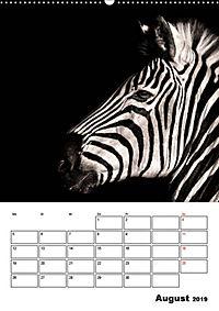 Charakterköpfe aus der Welt der Tiere (Wandkalender 2019 DIN A2 hoch) - Produktdetailbild 8