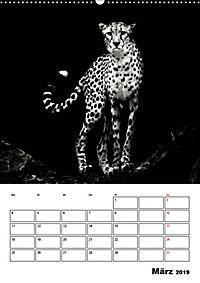 Charakterköpfe aus der Welt der Tiere (Wandkalender 2019 DIN A2 hoch) - Produktdetailbild 3