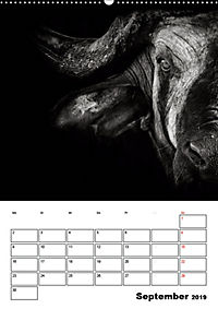 Charakterköpfe aus der Welt der Tiere (Wandkalender 2019 DIN A2 hoch) - Produktdetailbild 9
