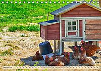 Charmante Hühner (Tischkalender 2019 DIN A5 quer) - Produktdetailbild 2