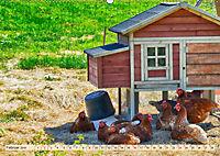 Charmante Hühner (Wandkalender 2019 DIN A2 quer) - Produktdetailbild 2