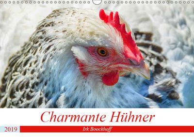 Charmante Hühner (Wandkalender 2019 DIN A3 quer), Irk Boockhoff