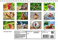 Charmante Hühner (Wandkalender 2019 DIN A4 quer) - Produktdetailbild 13
