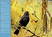 Charmantes Gezwitscher (Tischkalender 2019 DIN A5 quer) - Produktdetailbild 2
