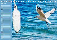 Charmantes Gezwitscher (Tischkalender 2019 DIN A5 quer) - Produktdetailbild 5