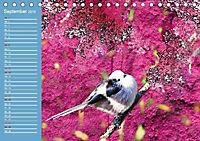 Charmantes Gezwitscher (Tischkalender 2019 DIN A5 quer) - Produktdetailbild 9