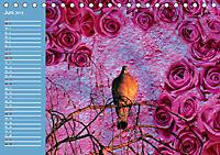 Charmantes Gezwitscher (Tischkalender 2019 DIN A5 quer) - Produktdetailbild 6
