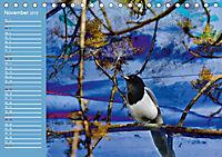 Charmantes Gezwitscher (Tischkalender 2019 DIN A5 quer) - Produktdetailbild 11