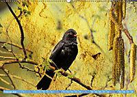 Charmantes Gezwitscher (Wandkalender 2019 DIN A2 quer) - Produktdetailbild 2