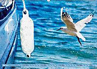 Charmantes Gezwitscher (Wandkalender 2019 DIN A2 quer) - Produktdetailbild 5