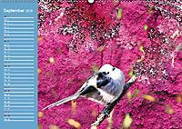 Charmantes Gezwitscher (Wandkalender 2019 DIN A2 quer) - Produktdetailbild 9