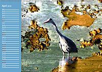 Charmantes Gezwitscher (Wandkalender 2019 DIN A2 quer) - Produktdetailbild 4