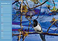 Charmantes Gezwitscher (Wandkalender 2019 DIN A2 quer) - Produktdetailbild 11