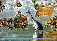 Charmantes Gezwitscher (Wandkalender 2019 DIN A3 quer) - Produktdetailbild 4
