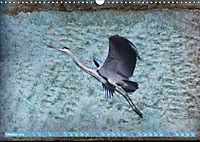 Charmantes Gezwitscher (Wandkalender 2019 DIN A3 quer) - Produktdetailbild 10