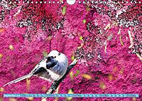 Charmantes Gezwitscher (Wandkalender 2019 DIN A4 quer) - Produktdetailbild 9