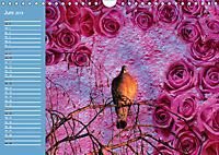 Charmantes Gezwitscher (Wandkalender 2019 DIN A4 quer) - Produktdetailbild 6