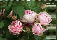 Charming Roses (Wall Calendar 2019 DIN A3 Landscape) - Produktdetailbild 1