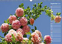 Charming Roses (Wall Calendar 2019 DIN A3 Landscape) - Produktdetailbild 9