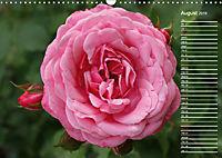 Charming Roses (Wall Calendar 2019 DIN A3 Landscape) - Produktdetailbild 8