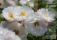 Charming Roses (Wall Calendar 2019 DIN A3 Landscape) - Produktdetailbild 12