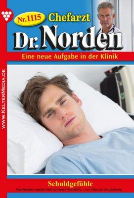Chefarzt Dr. Norden: Chefarzt Dr. Norden 1115 – Arztroman, Patricia Vandenberg