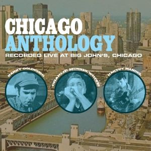 Chicago Anthology, Harvey Mandel, Barry Goldberg
