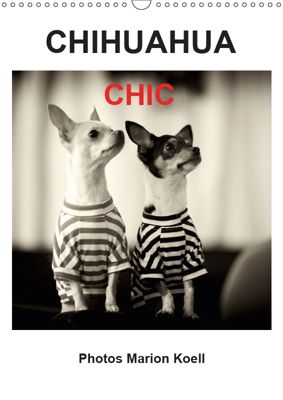CHIHUAHUA CHIC Photos Marion Koell / UK-Verison (Wall Calendar 2019 DIN A3 Portrait), Marion Koell