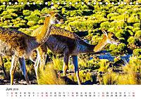 Chile - Land voller Kontraste (Tischkalender 2019 DIN A5 quer) - Produktdetailbild 6