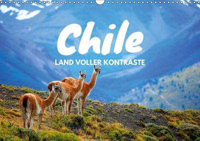 Chile - Land voller Kontraste (Wandkalender 2019 DIN A3 quer), Daniel Tischer