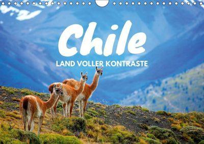 Chile - Land voller Kontraste (Wandkalender 2019 DIN A4 quer), Daniel Tischer